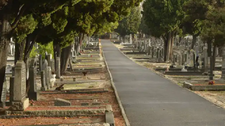 CoCT prepares mass burial sites for Covid-19 deaths