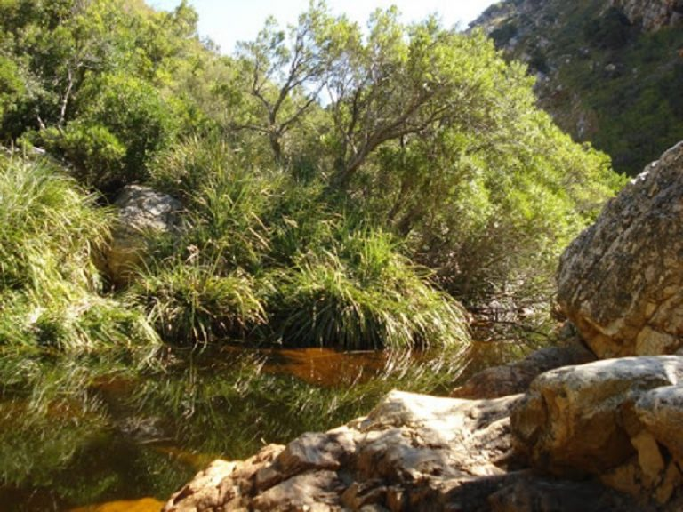 'Missing man' found camping on the Crystal Pools route after 6 hour search