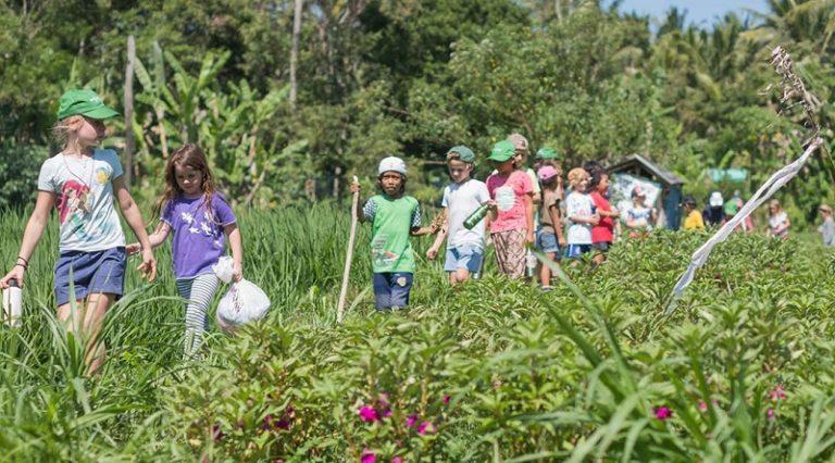 Green school set to open in Paarl-Franschhoek valley
