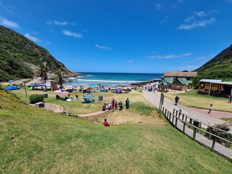High court reserves judgement in DA's application to have beaches along Garden Route reopened