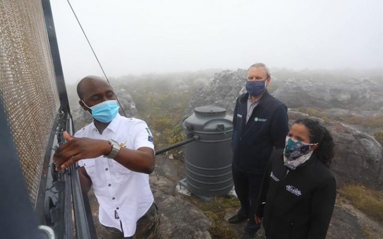 Fog harvesting pilot project launched on Table Mountain