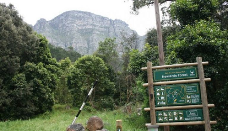 Certain sections of Table Mountain National Park re-opened to the public