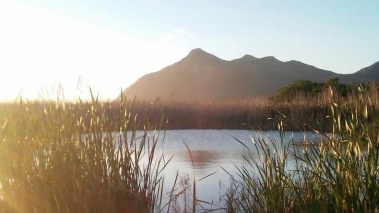Noordhoek environmentalists go to court to block wetland road project