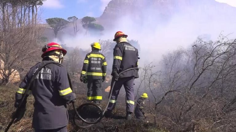 Cape Town fire: Arson suspect expected back in court today