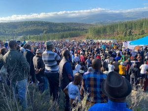 DeLille visits Grabouw to address community land-grab on state-owned forests