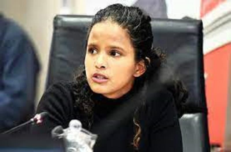 Yet another DA member caught in qualifications scandal