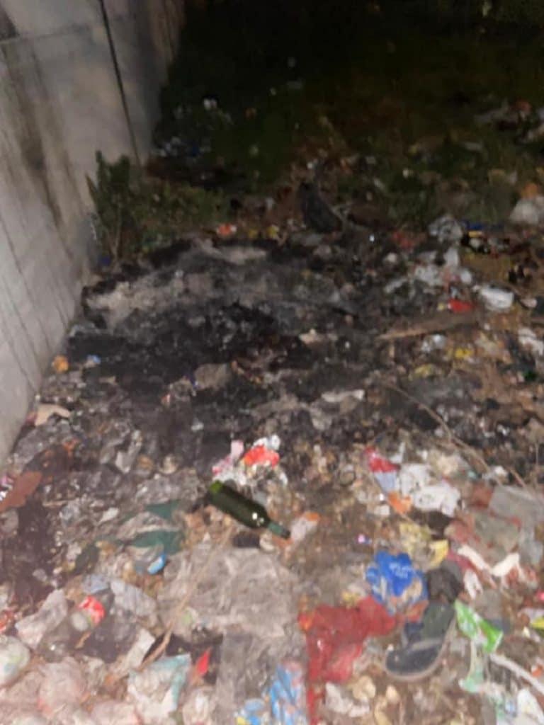 Paarl: Woman's dismembered body found in wheelie bin